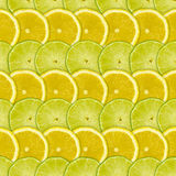 Abstract background with citrus-fruits slices of lemon and lime Stock Image