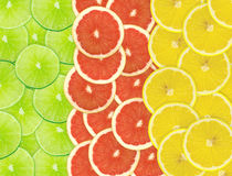Abstract background of citrus slices. Closeup. Studio photography Stock Image
