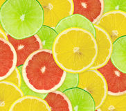 Abstract background of citrus slices. Closeup. Studio photography Stock Photo
