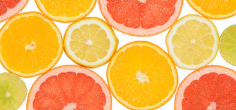Abstract background of citrus slices. Close-up. Studio photography Royalty Free Stock Photo