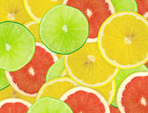 Abstract background of citrus slices. Closeup. Royalty Free Stock Photo
