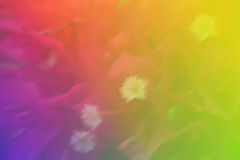 Abstract background. Abstract color tone background and texture Stock Photos