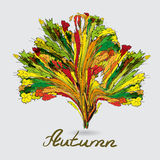 Abstract background of colorful autumn leaves in the form Stock Photos