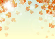 Abstract background of colorful autumn leaves. Vector royalty free illustration
