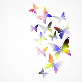 Abstract background with colorful butterfly. Royalty Free Stock Images