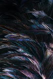 Abstract background colorful and dark shadow of Feather Stock Photos