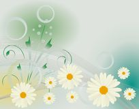 Abstract background with daisies Stock Images