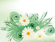 Abstract background with daisies Stock Photo