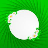 Abstract background with daisies and green leaves. This is file of EPS10 format Stock Photos