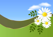 Abstract background with daisy. And clouds vector illustration