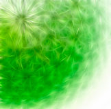 Abstract background - dandelion Stock Image