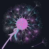 Abstract background of a dandelion for design. The wind blows the seeds of a dandelion. Template for posters, wallpapers, posters. Vector illustrations vector illustration