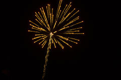 Abstract Background: Dazzling Fuzzy Golden Fireworks with Trail. Caught just after exploding, slightly blurred, golden, dazzling fireworks stretch in 360 degrees stock image