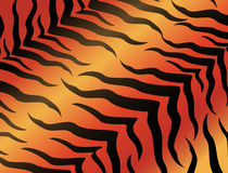 Abstract background for a design. Abstract background tiger for a design Royalty Free Stock Photos