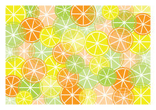 Abstract background with different kinds of fruit. Abstract background with color fruit cuts vector illustration