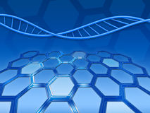 Abstract background with DNA. Blue abstract background with DNA and honeycomb texture Royalty Free Stock Photos
