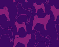 Abstract background dog. Vector seamless pattern Stock Photos