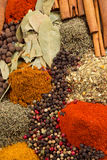 Spices. Abstract background of dried herbs and spices Stock Photography