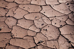 Abstract Background: Dry, Cracked Mud Royalty Free Stock Images