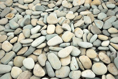 Abstract background with dry round pebble stones stock image