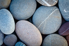 Abstract horizontal background dry round reeble stones Royalty Free Stock Image