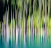 Abstract background of empty trees blurred Stock Photo