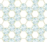 Abstract background with eucalyptus branches and hexagon figures stock photos