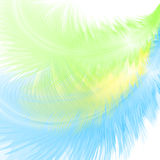 Abstract background with feathers. Abstract background with blue and green feathers. Eps10 Royalty Free Stock Images