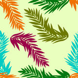 Abstract background with feathers. Abstract background with exotic feathers. Hand drawn vector illustration Royalty Free Stock Images
