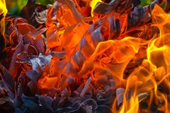 Abstract background of fire, coals, flames and twisting elements of ash.  Royalty Free Stock Image