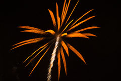 Abstract Background: Fireworks like Orange Palm Tr Royalty Free Stock Photos