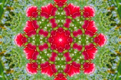Abstract background of floral pattern of a kaleidoscope. Pink blue green background fractal mandala. abstract kaleidoscopic arabesque. geometrical ornament vector illustration