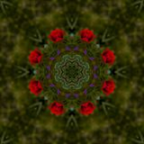 Abstract background of floral pattern of a kaleidoscope. Beautiful Abstract background of floral pattern of a kaleidoscope with red flowers and green background Vector Illustration