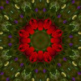 Abstract background of floral pattern of a kaleidoscope. Beautiful Abstract background of floral pattern of a kaleidoscope with red flowers and green background Royalty Free Illustration