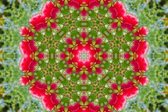 Abstract background of floral pattern of a kaleidoscope. Pink blue green background fractal mandala. abstract kaleidoscopic arabesque. geometrical ornament Royalty Free Stock Photography