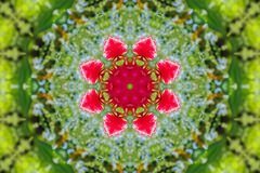 Abstract background of floral pattern of a kaleidoscope. Pink blue green background fractal mandala. abstract kaleidoscopic arabesque. geometrical ornament Stock Photography