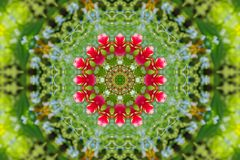 Abstract background of floral pattern of a kaleidoscope. Pink blue green background fractal mandala. abstract kaleidoscopic arabesque. geometrical ornament royalty free illustration