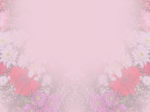 Abstract background with flower border Royalty Free Stock Photos