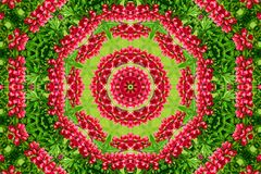 Abstract background of flower pattern of a kaleidoscope. Red green background mandala. abstract kaleidoscopic arabesque. geometrical ornament floral pattern royalty free stock images