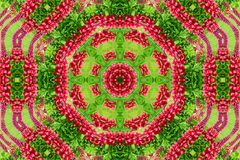 Abstract background of flower pattern of a kaleidoscope. Red green background mandala. abstract kaleidoscopic arabesque. geometrical ornament floral pattern royalty free stock photos