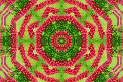 Abstract background of flower pattern of a kaleidoscope. Red green background mandala. abstract kaleidoscopic arabesque. geometrical ornament floral pattern stock image