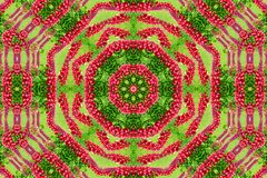 Abstract background of flower pattern of a kaleidoscope. Red green background mandala. abstract kaleidoscopic arabesque. geometrical ornament floral pattern stock photos