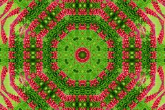 Abstract background of flower pattern of a kaleidoscope. Red green background mandala. abstract kaleidoscopic arabesque. geometrical ornament floral pattern stock images