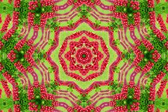 Abstract background of flower pattern of a kaleidoscope. Red green background mandala. abstract kaleidoscopic arabesque. geometrical ornament floral pattern stock photography