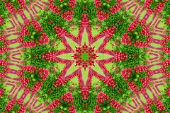 Abstract background of flower pattern of a kaleidoscope. Red green background fractal mandala. abstract kaleidoscopic arabesque. geometrical ornament  floral stock image