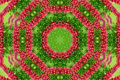 Abstract background of flower pattern of a kaleidoscope. Red green background fractal mandala. abstract kaleidoscopic arabesque. geometrical ornament  floral stock images