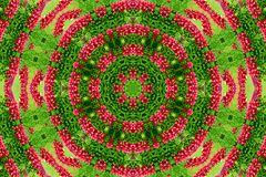 Abstract background of flower pattern of a kaleidoscope. Red green background fractal mandala. abstract kaleidoscopic arabesque. geometrical ornament  floral royalty free stock photography