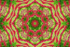 Abstract background of flower pattern of a kaleidoscope. Red green background fractal mandala. abstract kaleidoscopic arabesque. geometrical ornament  floral royalty free stock photos