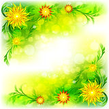 Abstract background with flowers Stock Photos