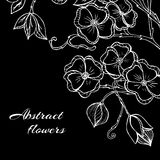 Abstract background with flowers in black and Stock Photos